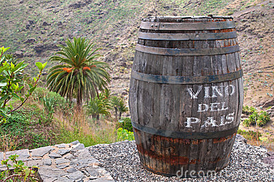 Lanzarote Wine against Volcanic Landscape