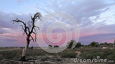 Lapso de tiempo de la puesta del sol almacen de video