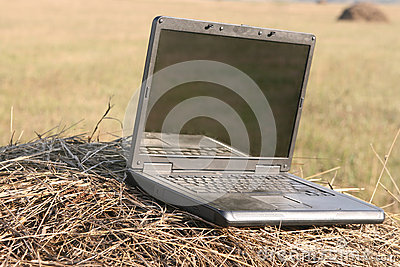 Laptop in hay stack