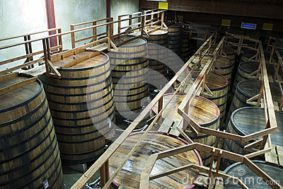 Large barrels in wine cellar