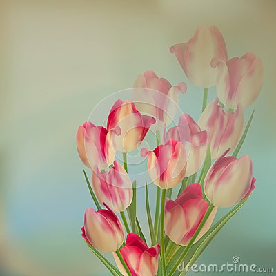 Free Large Bouquet Of Tulips. EPS 10 Royalty Free Stock Photography - 35986337