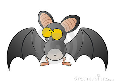 Large eyed bat