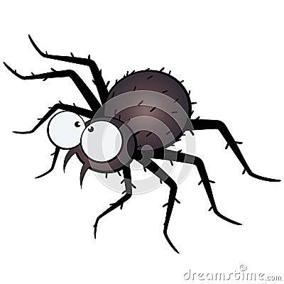 Large eyed spider illustration