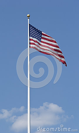 Large Flag USNA