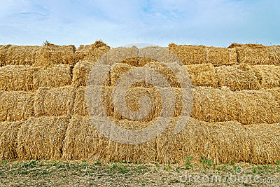 Large haystacks