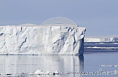 Large iceberg in Antacrtic Sound