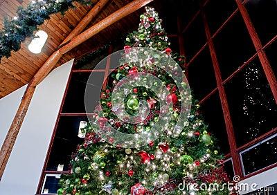 Christmas Lights For Windows Indoor