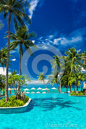 Free Large Infinity Swimming Pool On The Beach With Palm Trees And Stock Images - 61966884