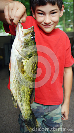 Free Large Mouth Bass Fish Royalty Free Stock Photography - 75013087