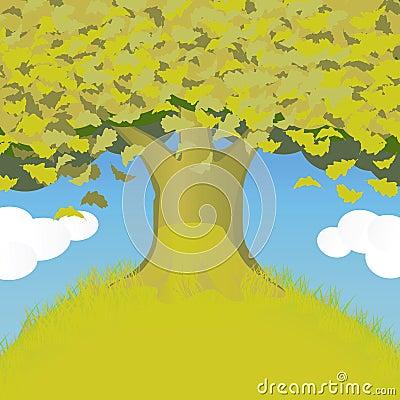 Large oak tree on the hill