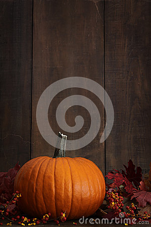 Large pumpkin with leaves against a wood