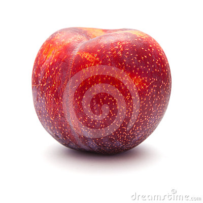 Large red plum