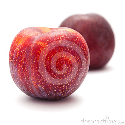 Large red plums
