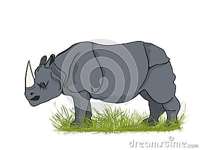 Large rhino