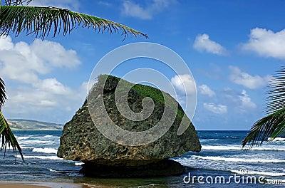 Large rock at bathsheba