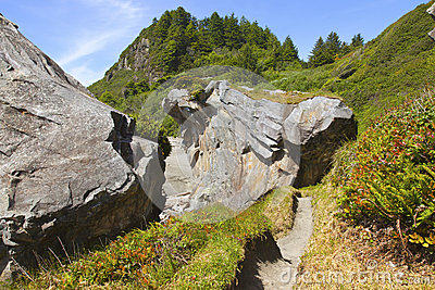Large rocks and vegetation, Oregon coast.