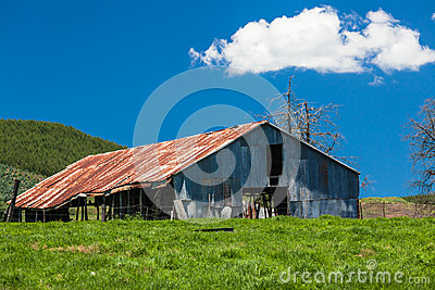 Farm Large Barn Green Blue Editorial Stock Image