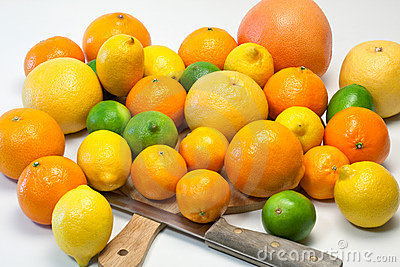 Large selection on citrus fruits