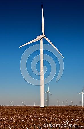Large Wind Turbine in a Cotton Field