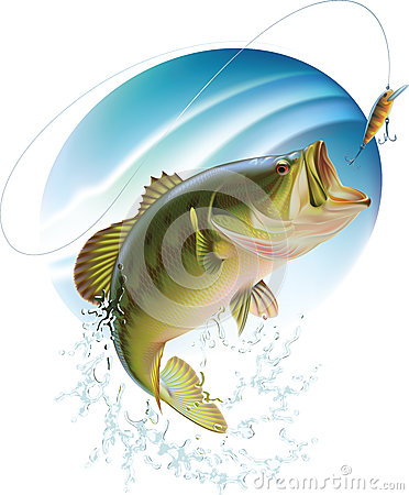 Free Largemouth Bass Catching A Bite Royalty Free Stock Image - 28890296