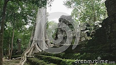 Largura de uma seda de algodão e das ruínas do templo de Tprohm, âncora vídeos de arquivo
