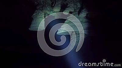 Las formaciones de roca subacuáticas o las estalactitas saben como Belces del infierno en el cenote de Zapotec, México almacen de video