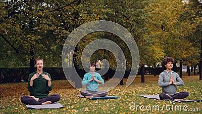 Las mujeres bonitas están relajando sentarse en la posición de loto respecto a las esteras de la yoga en el parque y el aire fres metrajes