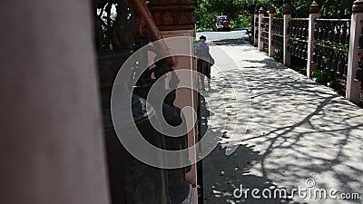 Las mujeres tailandesas viajan en Phanom Sawai Forest Park en Surin, Tailandia almacen de metraje de vídeo
