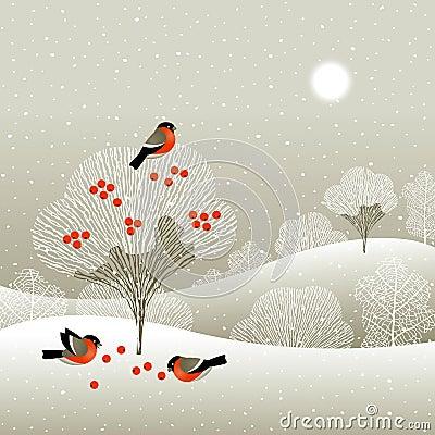 Lasowa zima
