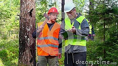 Lasowy oficer wyjaśnia młody pracownik wyznaczający praca zbiory