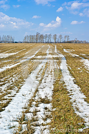 Free Last Snow Royalty Free Stock Photography - 36814827