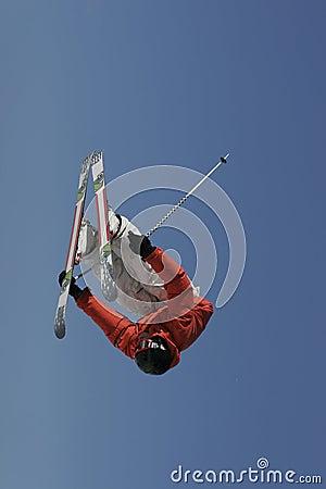 Lastbilsförare inverterad Skier