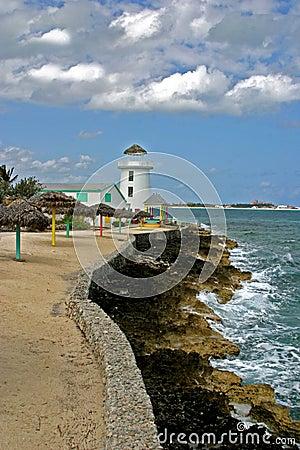 Latarnia morska karaibska
