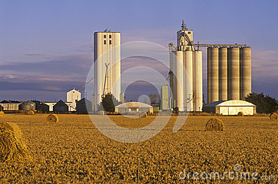 Late afternoon view of grain silos