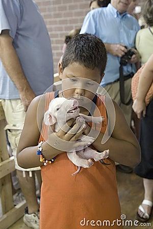 Latino boy holding baby pig Editorial Stock Image