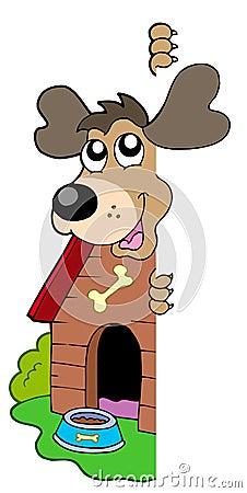 Lauernder Hund