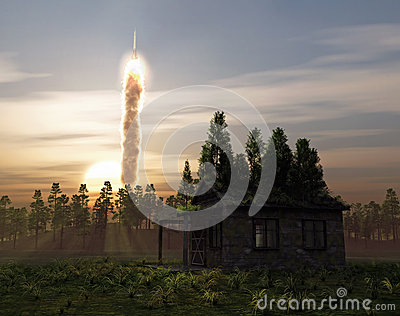 The launch in the forest