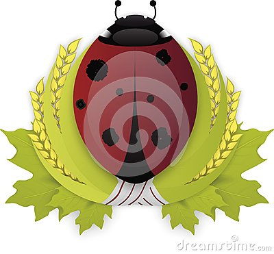 Laurel wreath LadyBird