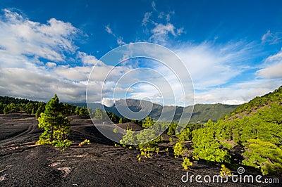 Lava landscape on the Cumbre Nueva in La Palma