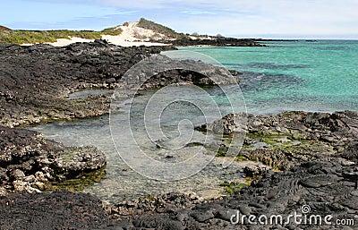 Lava Shoreline