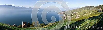Lavaux and Geneva Lake (Lac Léman)