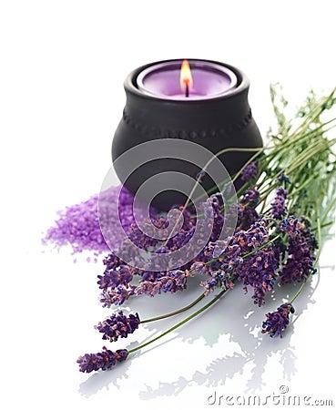 Free Lavender Stock Image - 13221191