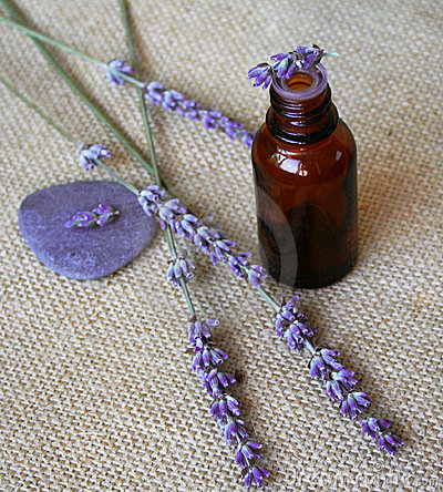 Free Lavender And Bottle Of Essential Oil On Sackcloth Royalty Free Stock Photos - 10476908