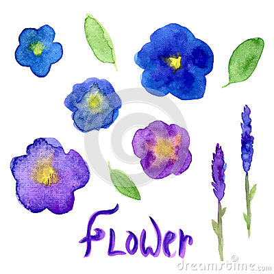 Free Lavender And Viola Watercolor Collection. Violet Flowers Set.  Vector Hand Drawn Illustration For Invitation Royalty Free Stock Photo - 56887465