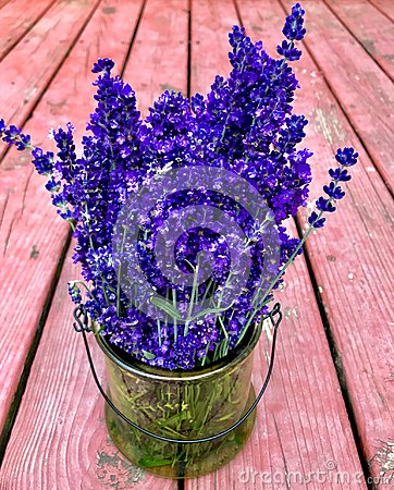 Free Lavender Bouquet Again Wood Backdrop Stock Images - 113337464