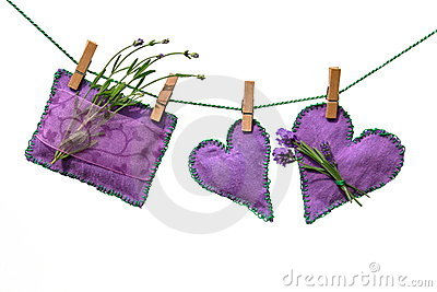 Lavender flowers and cushions