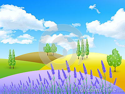 Lavender Flowers Landscapes