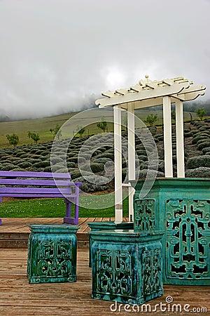 Lavender gardens in Maui
