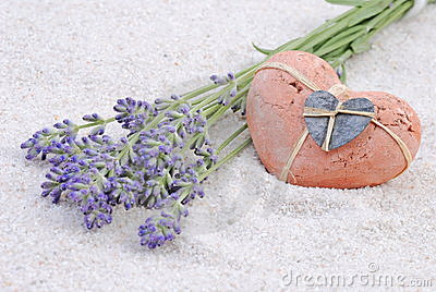 Lavender with heart