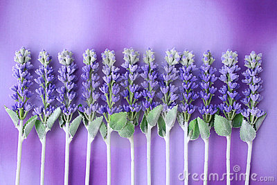 Lavender queue